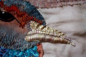 Pheasant beak detail