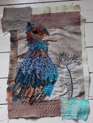 Pheasnt phoenix